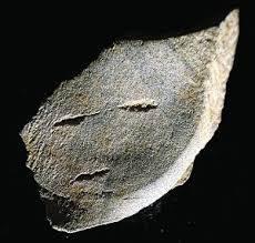 충북 단양의 수양개 유적에서 발견된 사람 얼굴 모습의 돌조각. 인류가 얼굴을 돌에 새긴 가장 오래된 유물일 가능성도 있다.